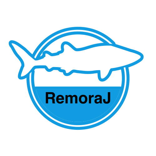 RemoraJ – an easy and low cost way to instrument Java apps