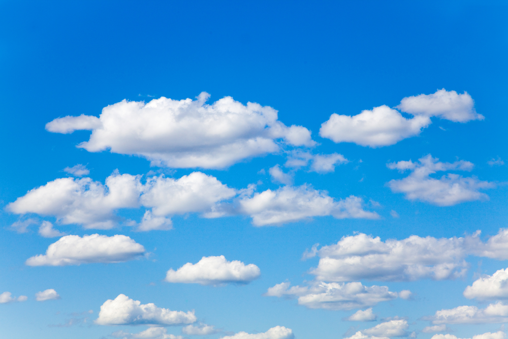 The New Normal Is Here To Stay: Businesses Will Only Grow On Cloud
