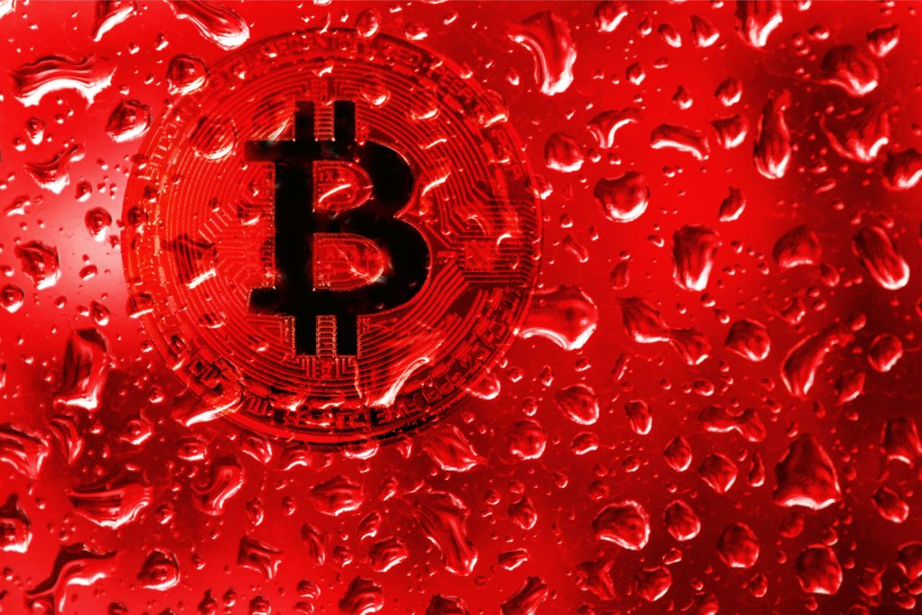 Expect More Bitcoin On Balance Sheets, As Paypal, MicroStrategy Fidelity And Walmart Sound Off On Blockchain